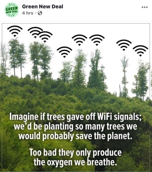 wifi - Mastodon